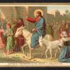 91 Entrata trionfale a Gerusalemme