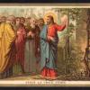 96 Gesù e la vigna